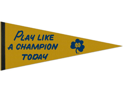 Notre Dame Fighting Irish Wincraft 12x30in Pennant
