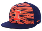Illinois Fighting Illini Nike NCAA NTS Game Day Snapback Adjustable Hats