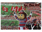 Ohio State Buckeyes Go Bucks Collage Postcard Collectibles