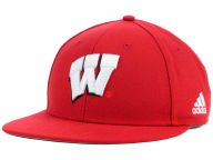 Wisconsin Badgers Hats