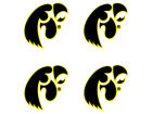 Iowa Hawkeyes Waterless Game Face Tattoo Gameday & Tailgate