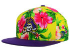East Carolina Pirates Top of the World NCAA Waverunner Snapback Hat Adjustable Hats