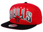 Chicago Bulls Mitchell and Ness NBA Double Bonus Snapback Cap Adjustable Hats