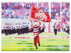 Ohio State Buckeyes 10x14 Canvas Print Collectibles