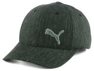 Puma Casual Flex Cap Stretch Fitted Hats