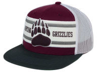 Montana Grizzlies Hats